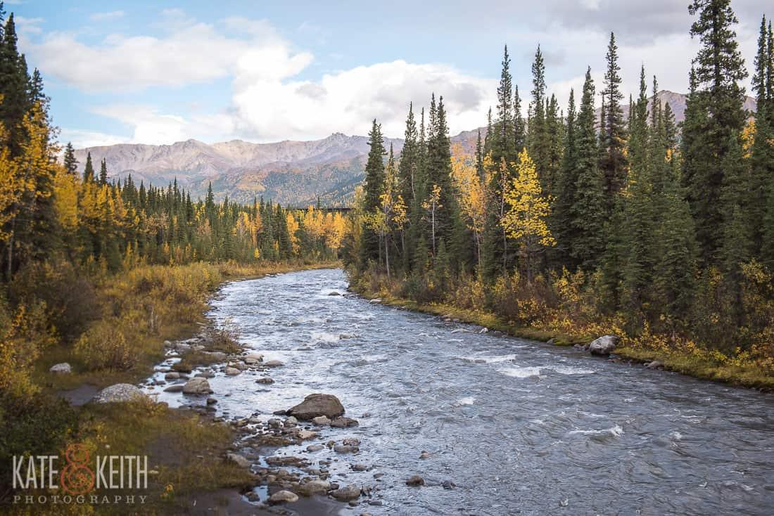 Nine mile Triple Lakes Trail Denali