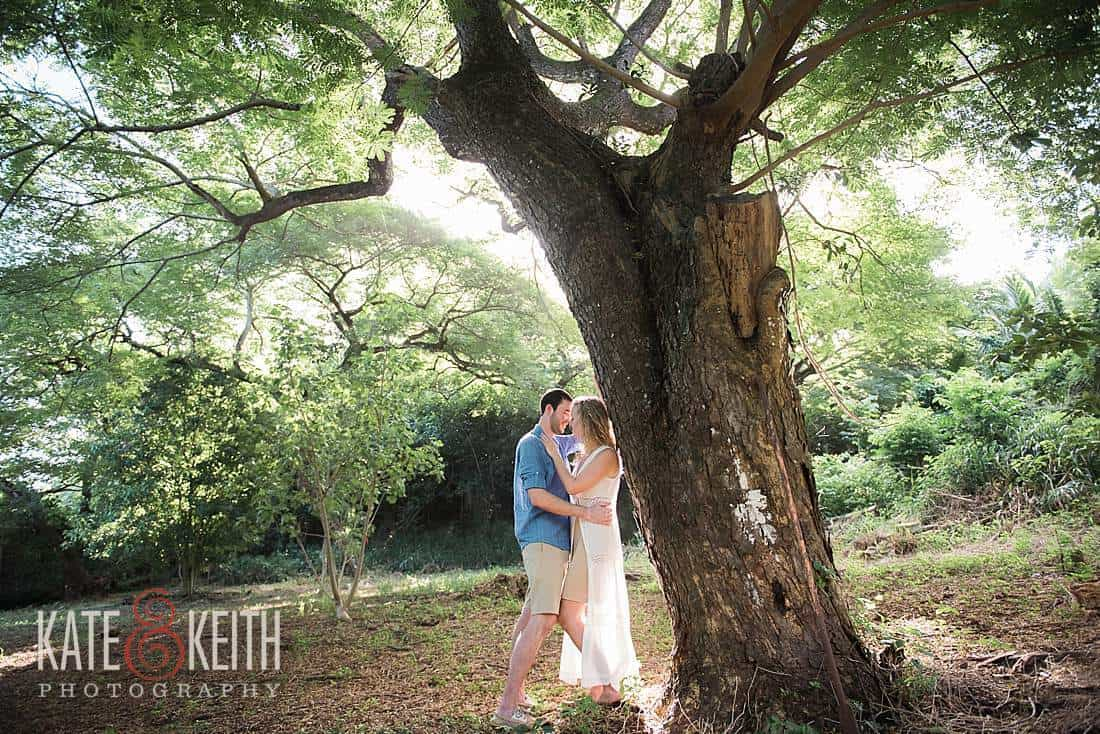 Kailua Forest sunrise engagement photos