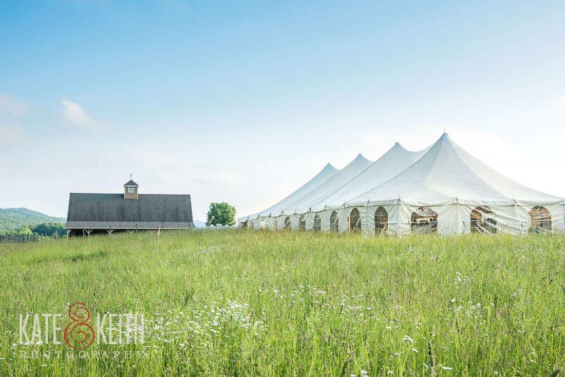 Tent wedding alpaca farm wedding New York