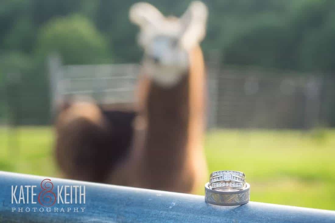 llama Alpaca Farm Wedding rings