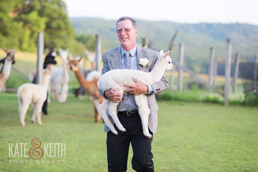 Cria Alpaca Farm Wedding NY