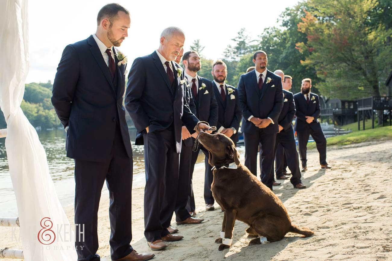 Dog sits with groom at wedding