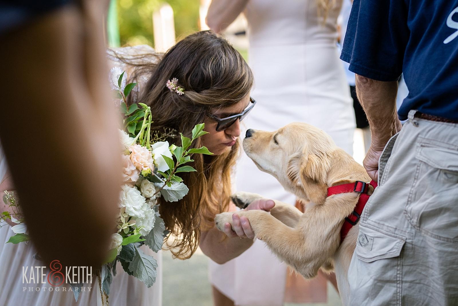 Acadia National Park Wedding Photographer