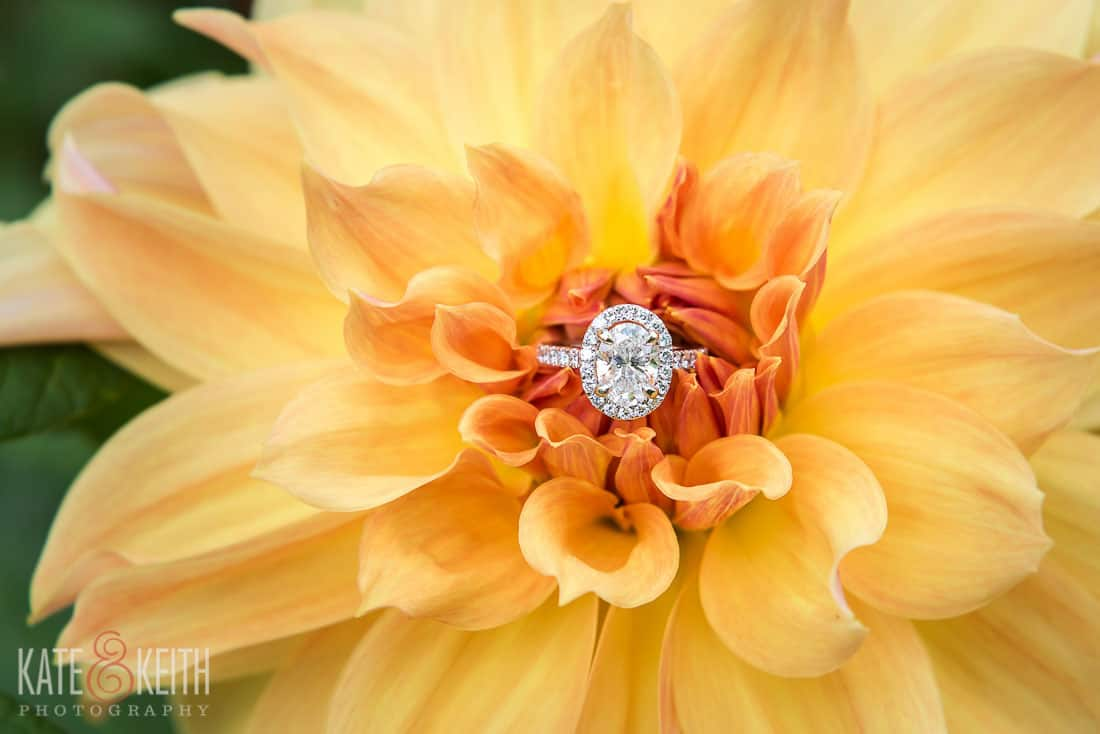 Acadia National Park Engagement Ring