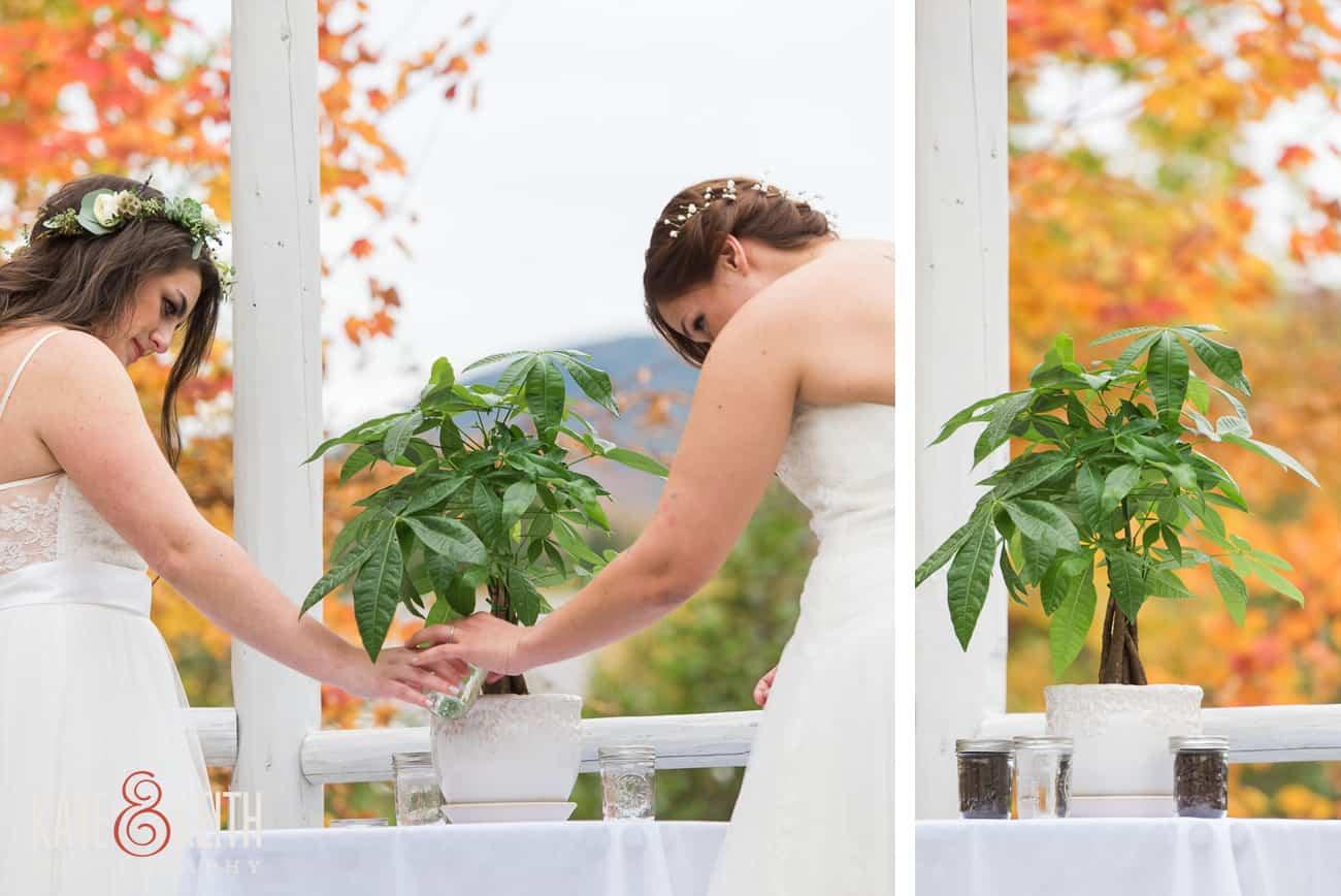Lesbian tree planting ceremony